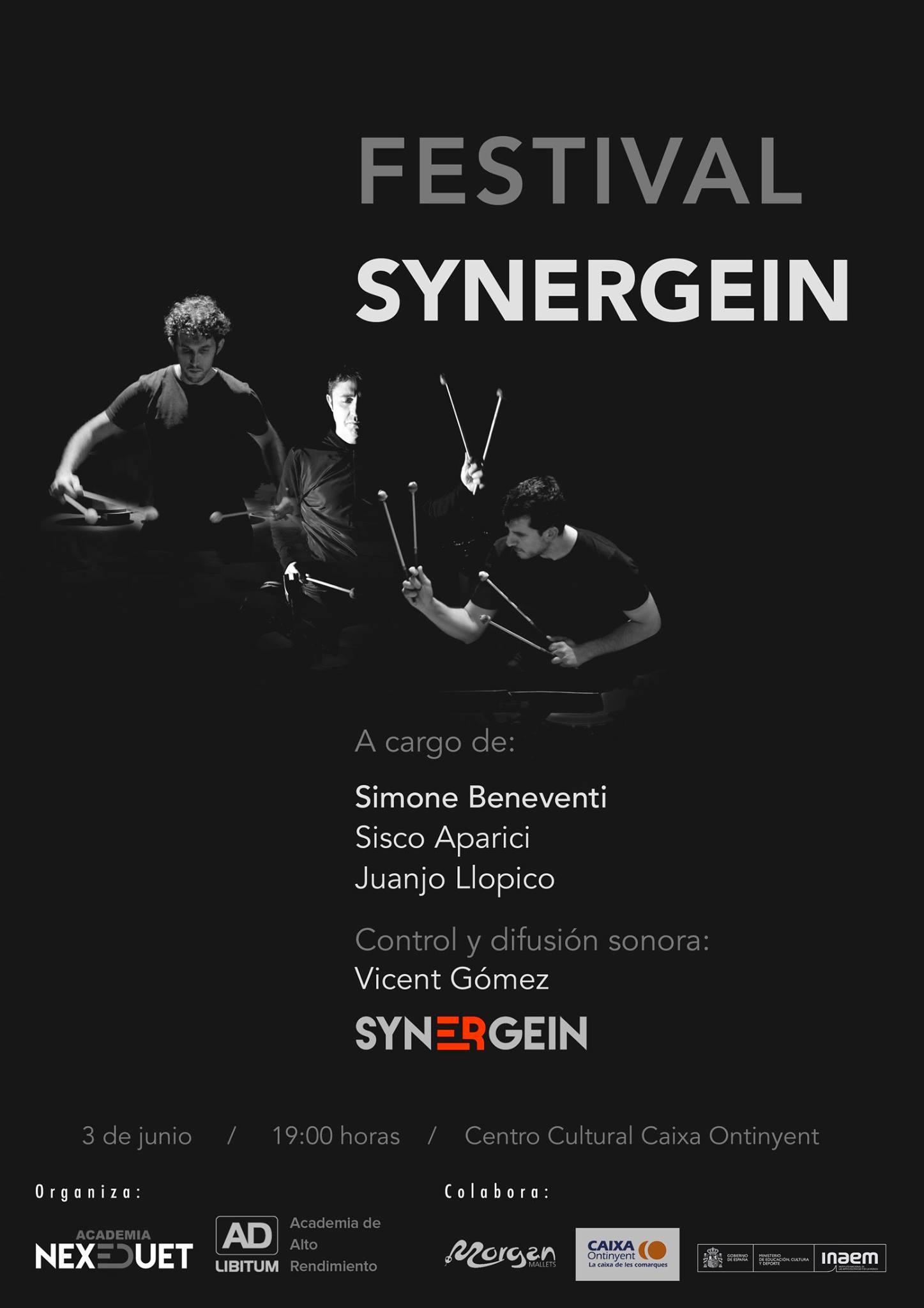 festival synergein_ES_2_6_17